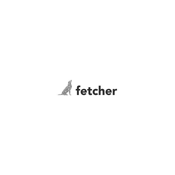 Logo Fetcher